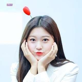 [WTB] All of Choerry's photocards/merch (LOONA)