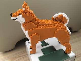 已砌Jekca柴犬Shiba