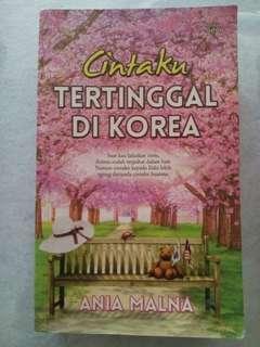 Cintaku Tertinggal Di Korea (novel terpakai)