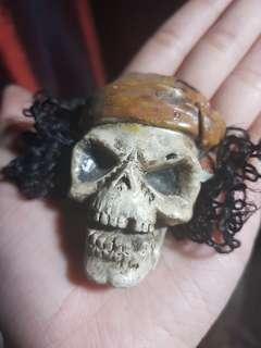 Rare Skull magnetic display