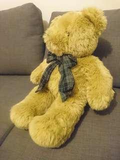 🚚 泰迪熊 teddy bear 玩偶 抱枕