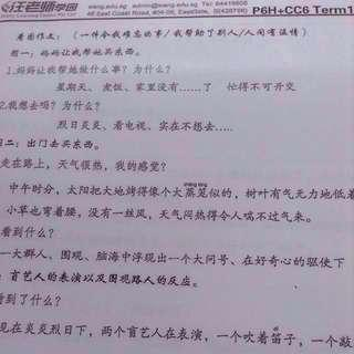 P6 Wang Learning Centre Chi Compo Notes