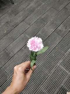 Jual Bunga Keramik