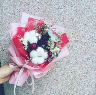 粉紅蜜桃風⭐尤加利木棉花