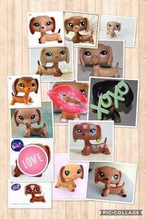 🚚 littlest pet shop