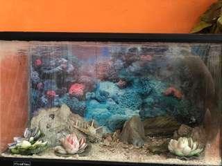 Thick Fibre Glass Seamless Aquarium