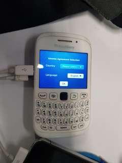 Blackberry White