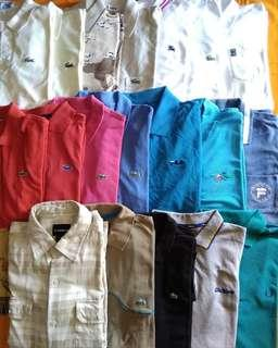Polo lacoste Fred Perry ellese fila