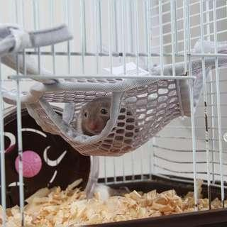 Hamster toy, soft bed, sleeping bag (mesh) for cage