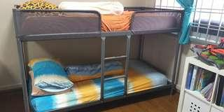 🚚 Ikea Tuffing Bunk Bed
