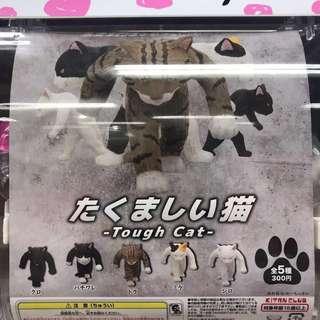 日本扭蛋 粗暴貓 Tough Cat 三色貓 未拆過