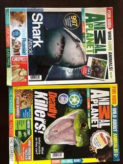 🚚 Animal planet magazine