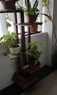 Tower plant rack stand solid wood quality wood