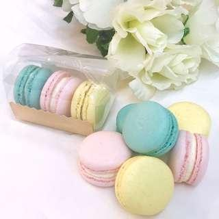 Macaron Goodie / Gift Bags