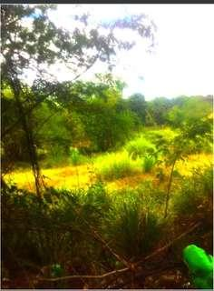 VACANT LOT FOR SALE IN SAN RAFAEL BULACAN 3.6 HECTARES