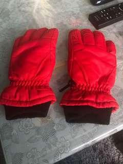 Ski or snowboard gloves