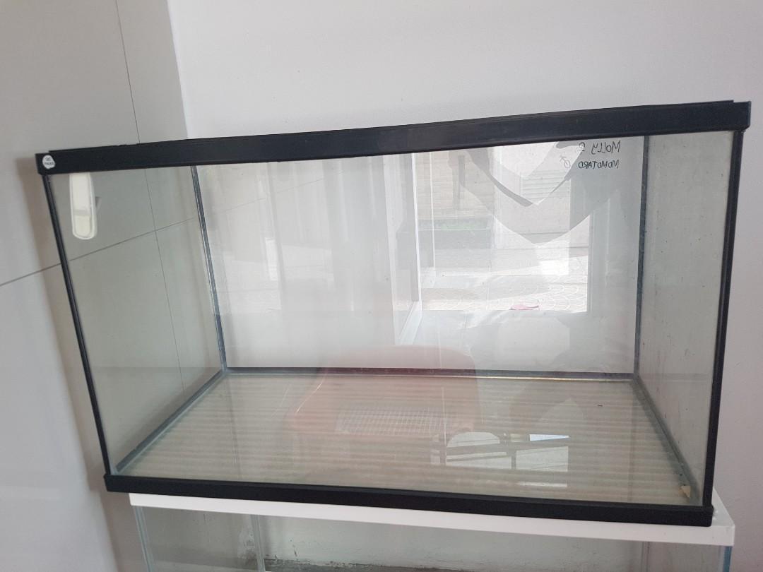 Aquarium Gex Ll 60 Cm X 30 Cm X 36 Cm Pet Supplies