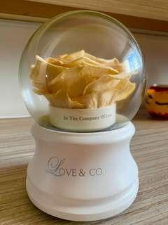 SELLING Love and Co Revolving Music Box with Dried Rose