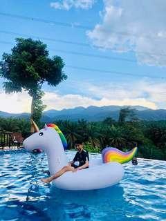 Giant Unicorn 🦄 Inflatable Float