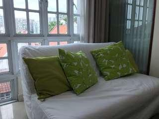 Sofa Bed w/ removable sheet