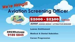 Aviation screening officer