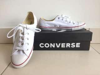 Converse Dainty Ox