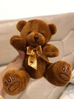 Teddy bear / boneka teddy
