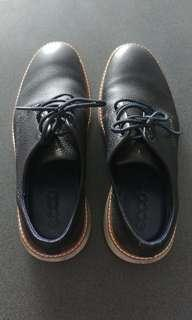 Genuine Leather Ecco Shoes
