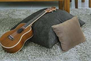 Scanteak Throw cushions