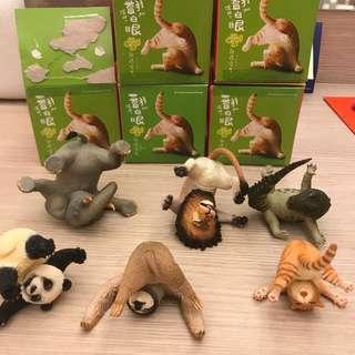 🚚 Animal life 翻滾吧!白眼