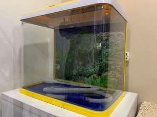 Yellow aquarium