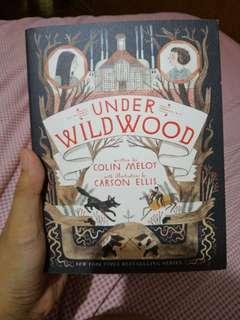 Under Wildwood by Colin Meloy with illustrations by Carson Ellis