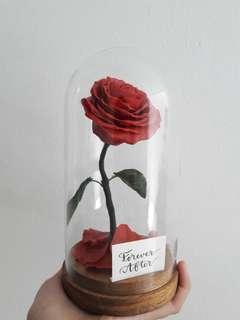 Disney Belle Rose