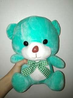 Turquoise color Teddy