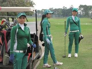 Golf Caddy Urgent!!