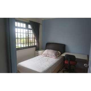 Directly opp Sengkang mrt corner common rm for rent