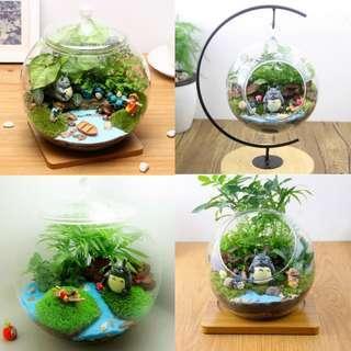 🚚 2019 Terrarium Series 6-Fishing Totoro Terrarium Garden