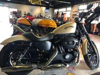 HD XL883N aka Sportster Iron