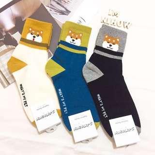 🚚 柴犬襪子