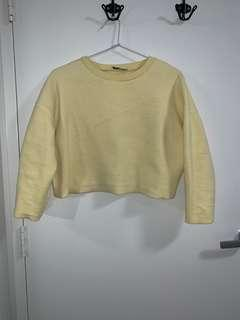Zara Soft-Touch Cropped Sweater