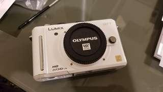 Panasonic LUMIX GF1 Camera