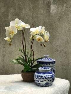 Gubahan Orkid Hiasan