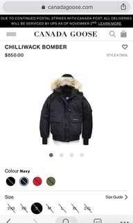 Canada goose chiliwack bomber