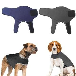 Dog anti-anxiety vest