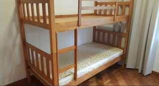 Solid wood Double Decker Bunk Bed