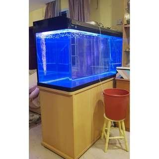 Tailor-made Aquarium