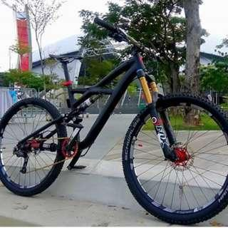 Specialized Enduro Evo 2012 ( Frame Only )