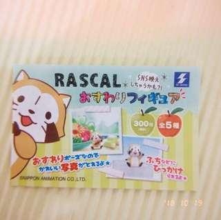 🚚 【SK JAPAN扭蛋 小浣熊坐姿杯緣公仔】日本轉蛋 拉斯卡爾動畫 Rascal淘氣洛斯可 療癒擺飾 可愛動物