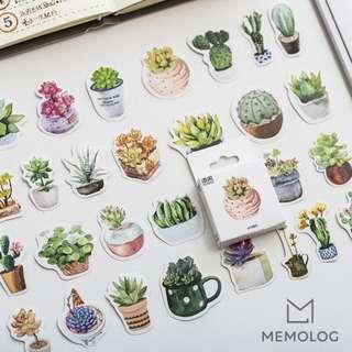 50pcs Cute Succulent Cactus Plant Sticker Pack (2)