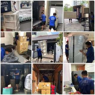 Professional Mover / House Moving / Dispose Service